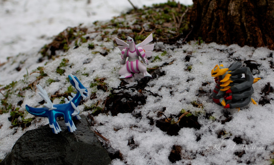 February 21, 2011 : Pokémon Battle, DSC 6278  2  3  4  5 920x555