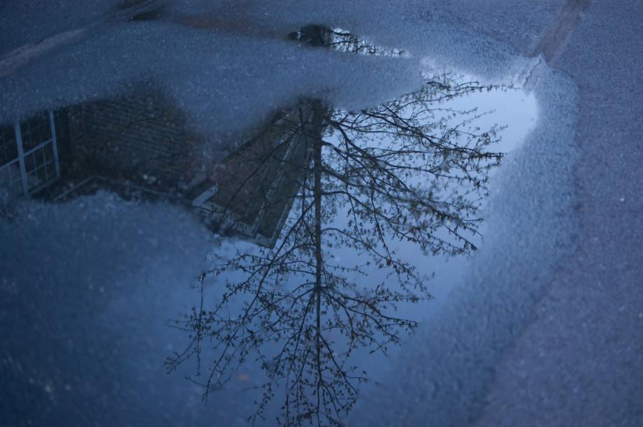 April 27, 2011 : Reflection at dusk, 20110427 NIKON D40 7270 920x611