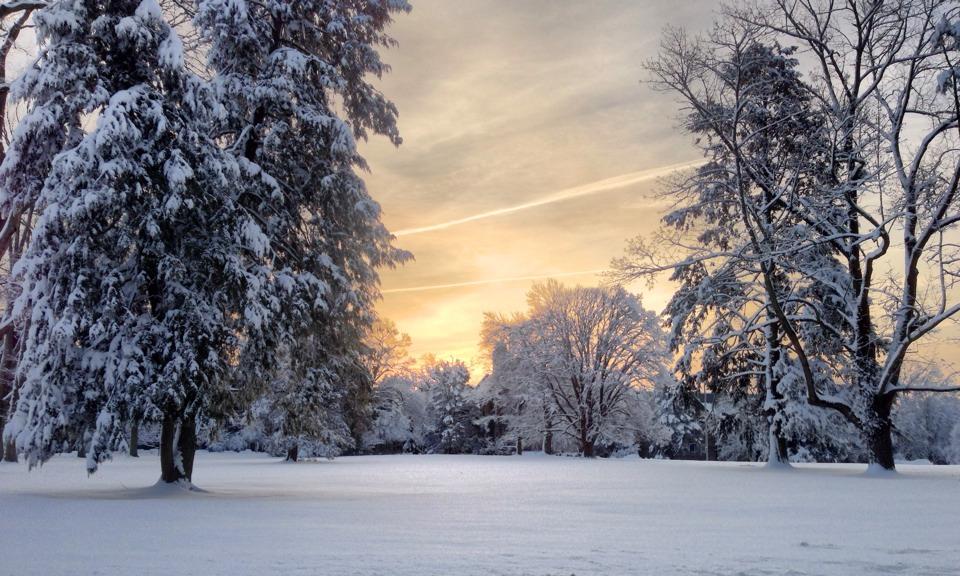 snow, Princeton