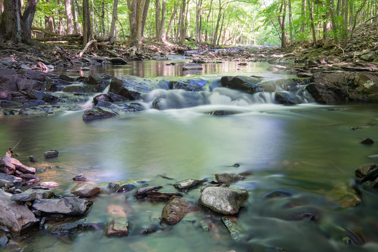 Fuji X T1 and Fuji 10 24mm f/4 R OIS at the Rock Brook X T1 20140526 7229 blog