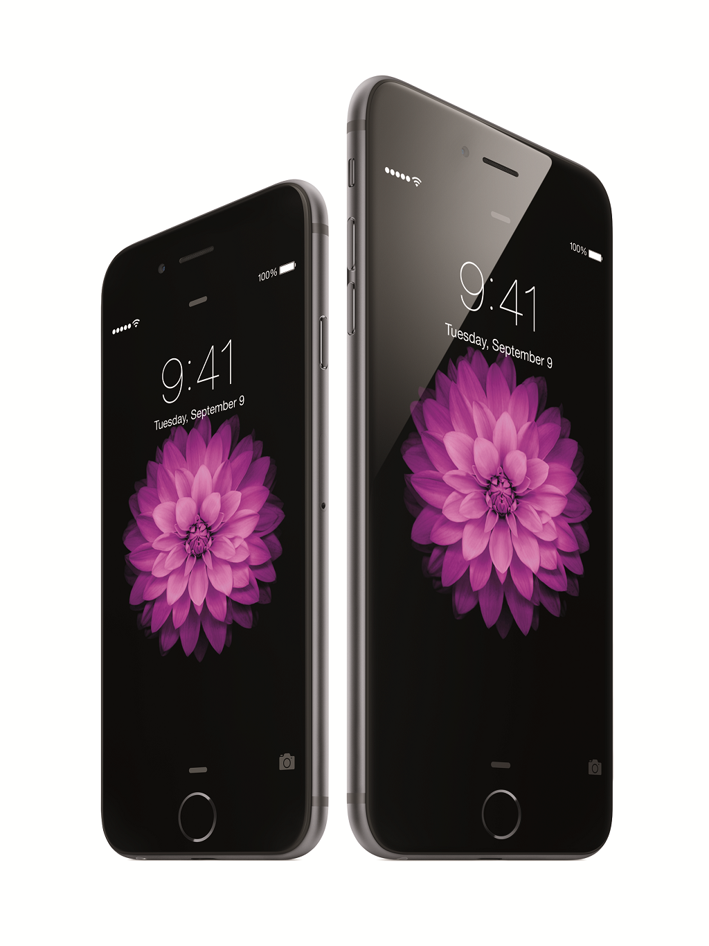 iPhone Upgrade Time iPhone6 34R SpGry iPhone6Plus 34L SpGry flwr PNG 96
