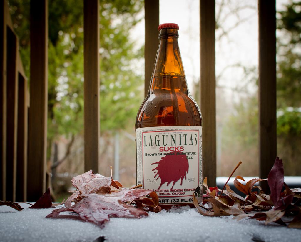 Beer in Bottle Snow