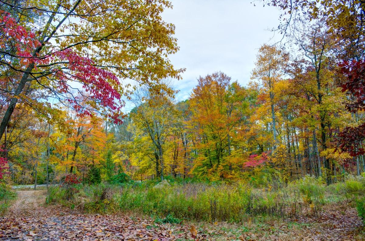 Mountain Lakes Nature Preserve NIKON D5100 20151031 NIKON D5100 20151031 9343 4 5 HDR Edit blog