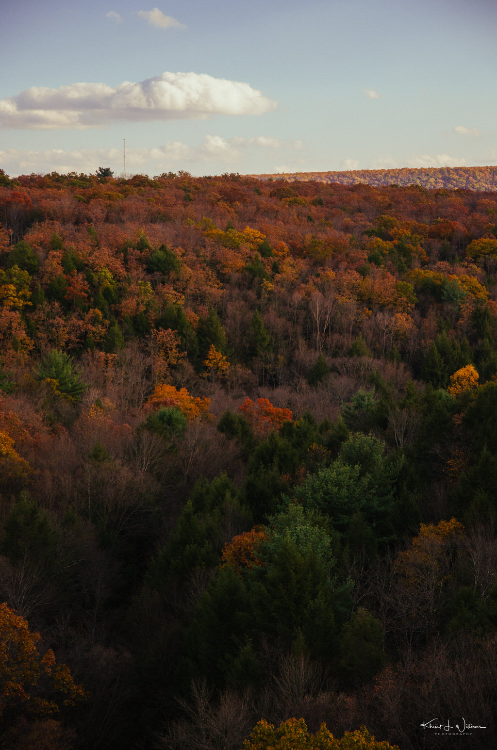 Autumn Leaf Excursion to Jim Thorpe on the Lehigh Gorge Scenic Railway Lehigh Gorge Railway Jim Thorpe Autum Leaf Excursion NIKON D5100 20161023 5221 1