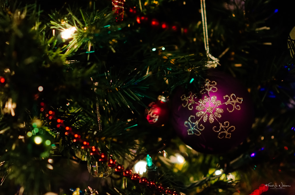 Christmas, Tree, Lights, Ornament