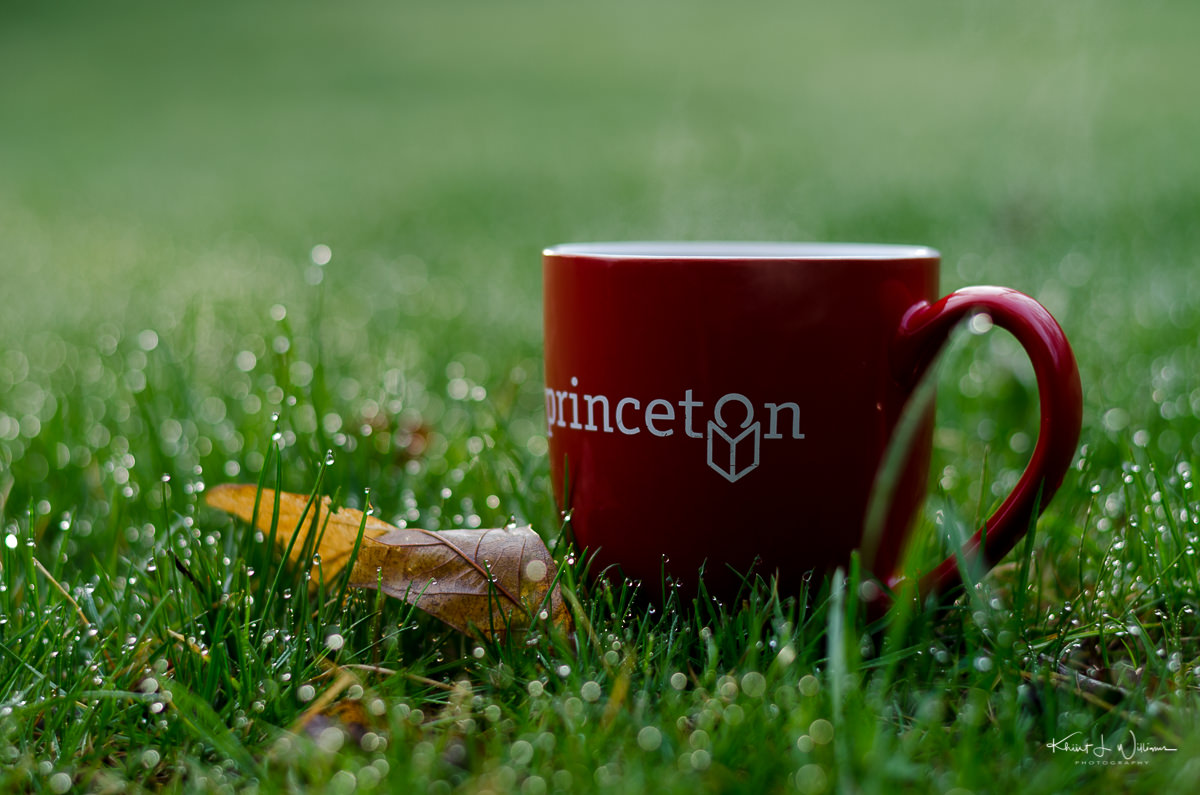 morning, dew, ,mug, leaf