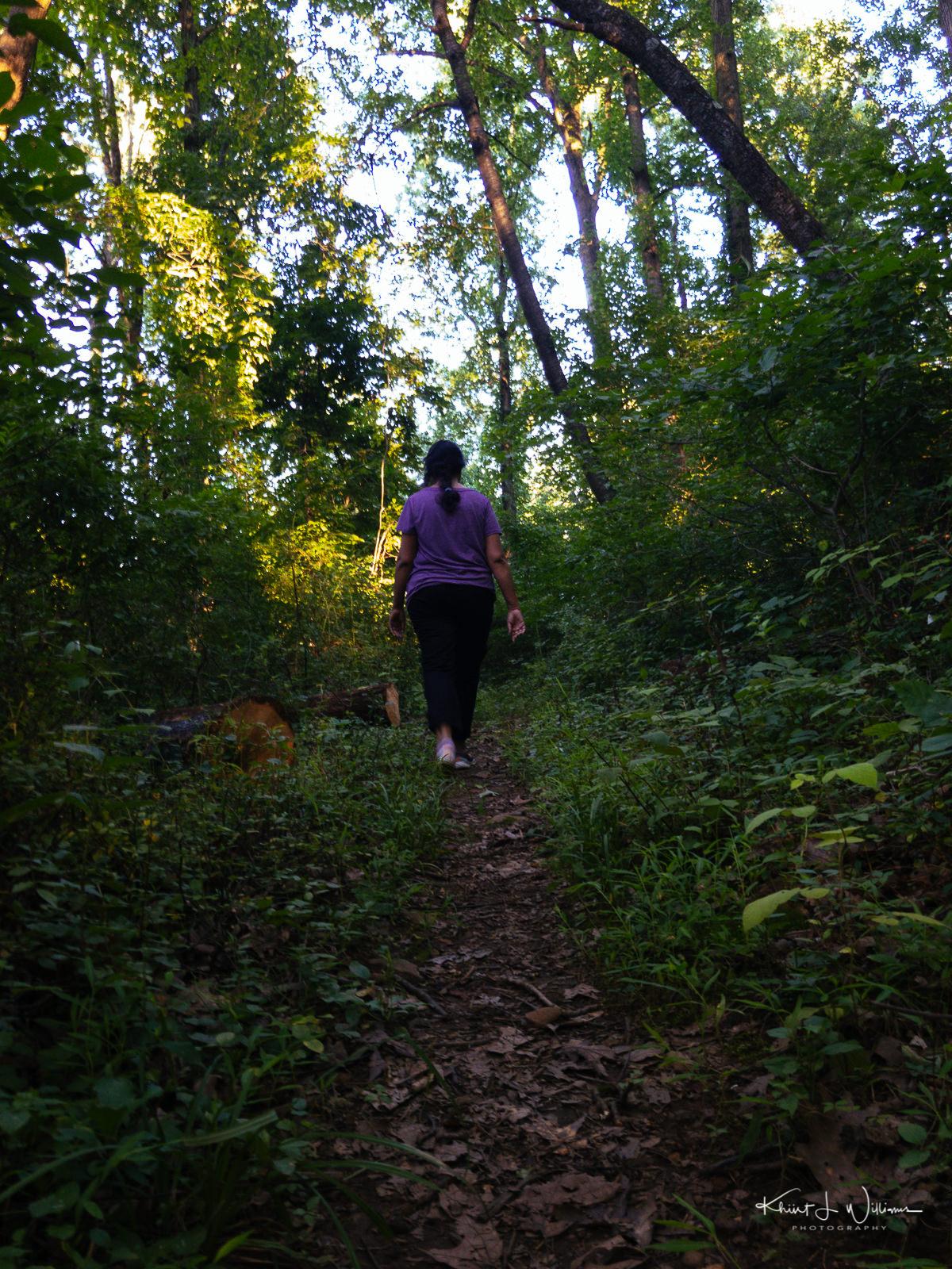 Woods APC 0298 1