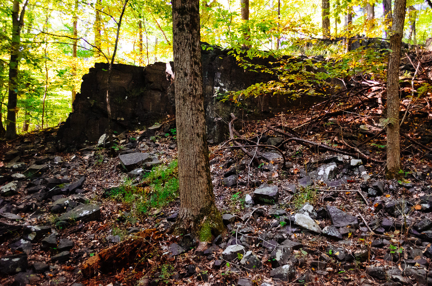 Stones, Sourland Mountain Preserve