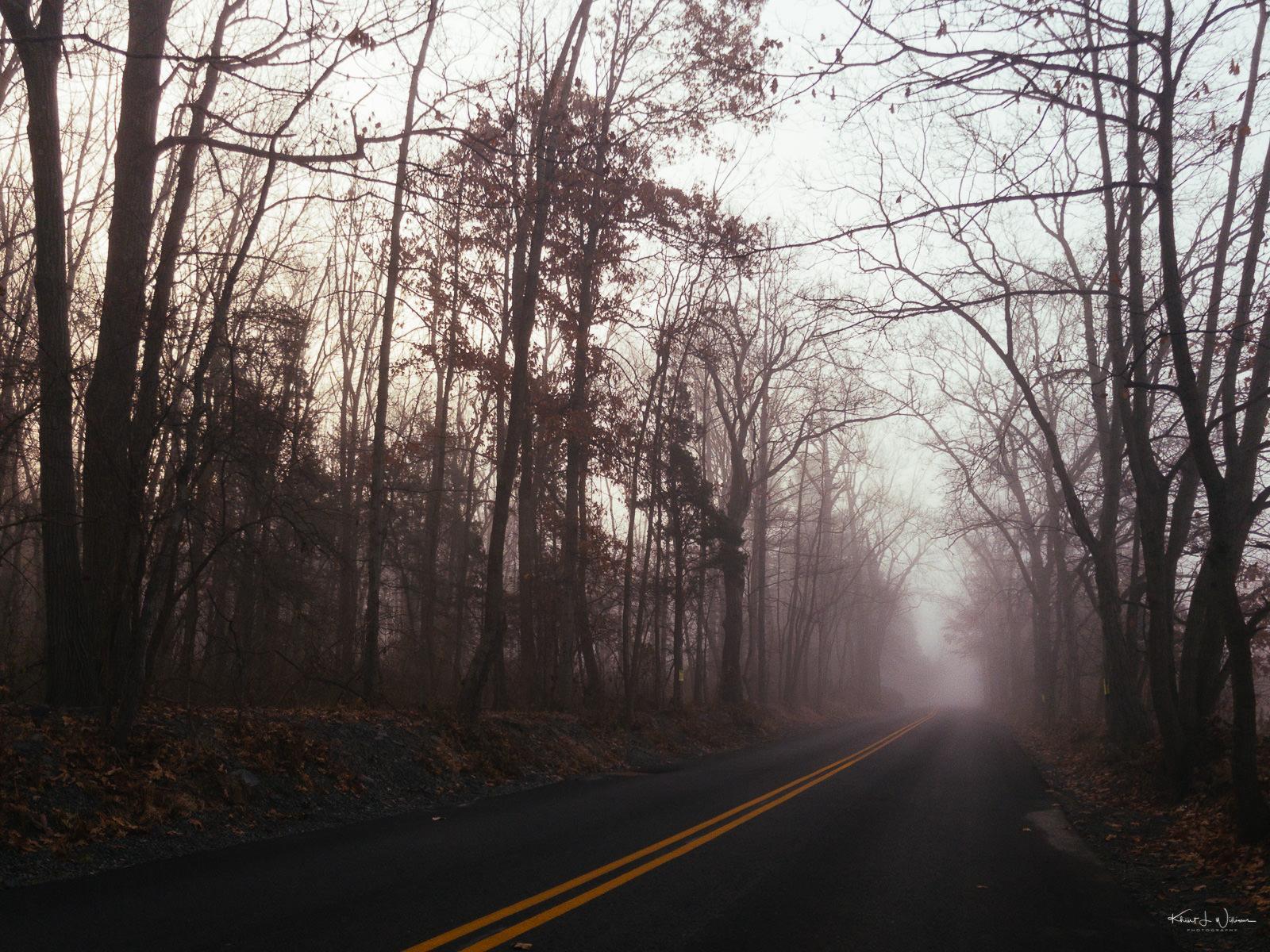 Fog, Road