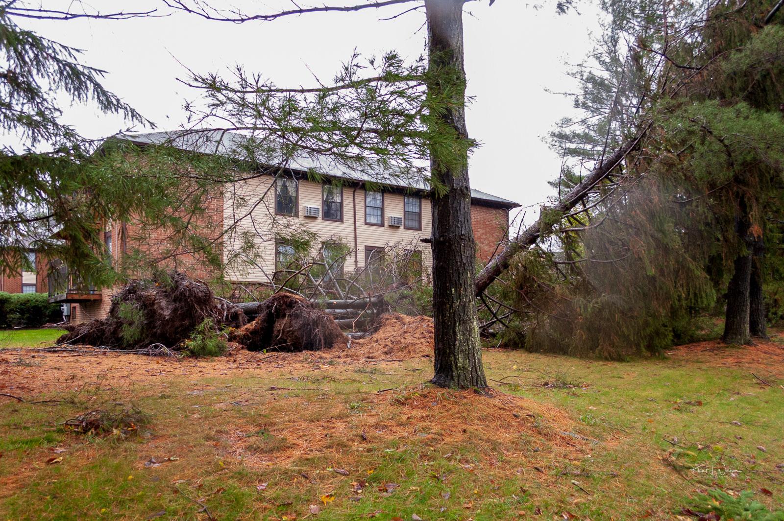 After Sandy Hurricane Sandy NIKON D40 20121030 1