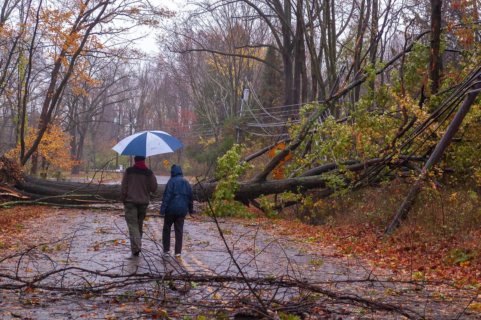 Hurricane, Hurricane Sandy, Disaster