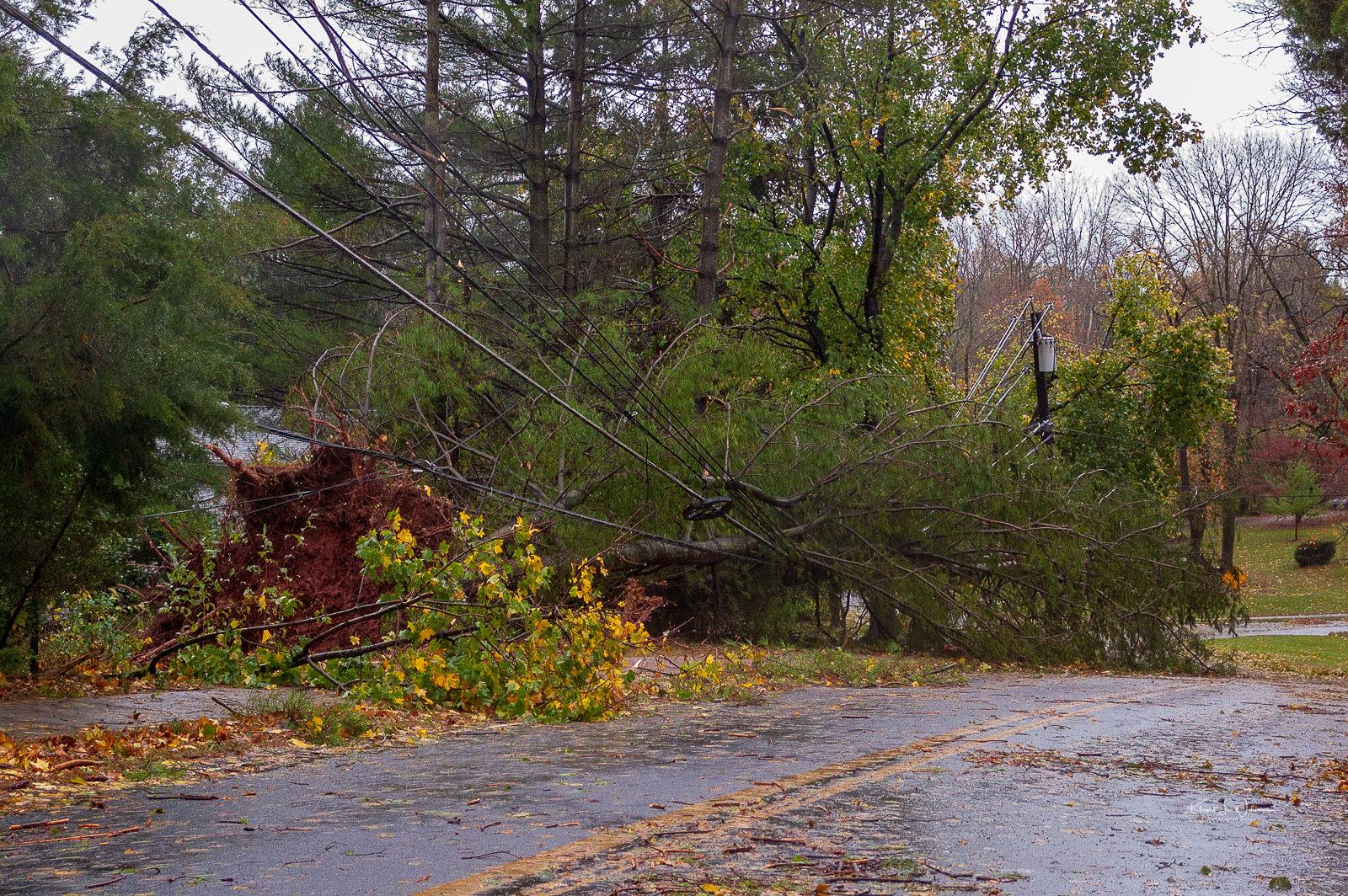 Hurricane, Hurricane Sandy, Rocky Hill