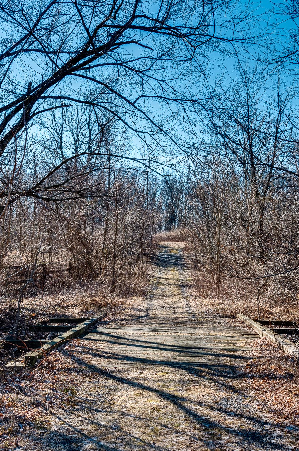 Griggstown Native Grassland Preserve