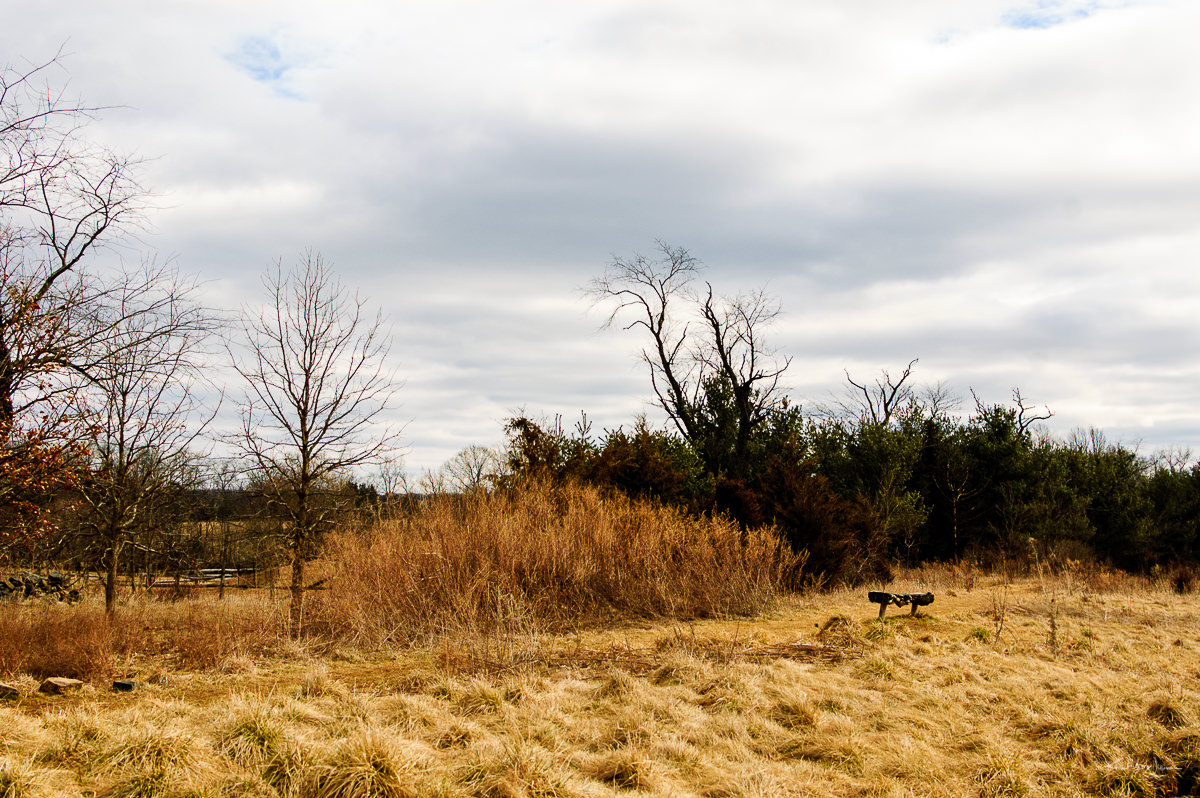 Terry Lynch, Hobler Park, Open Space, Field, Nature, Winter, Sky, Grass