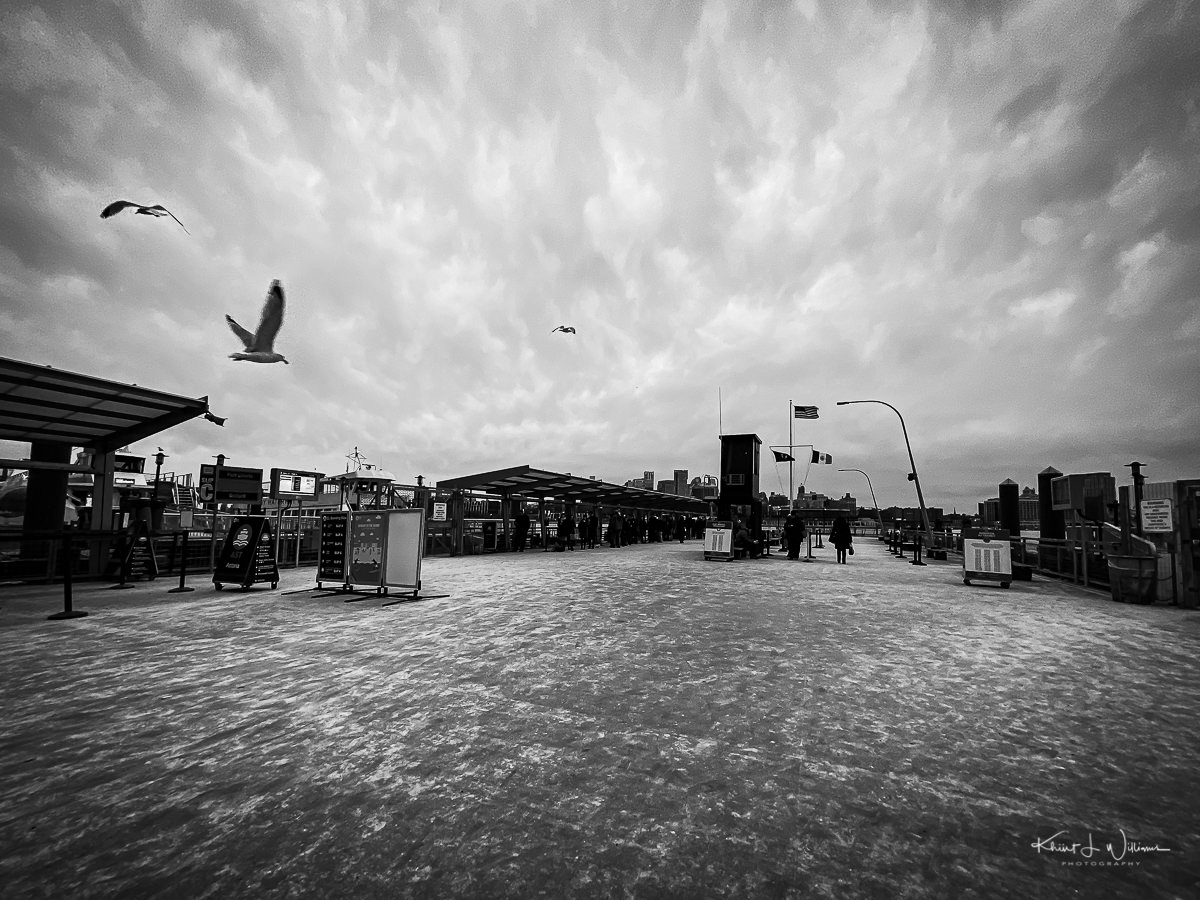 Birds flying over a pier against a cloudy sky