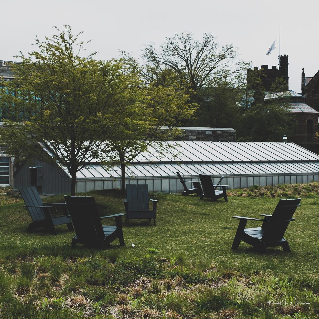 Betsey Stockton Garden at Firestone Library, Princeton University