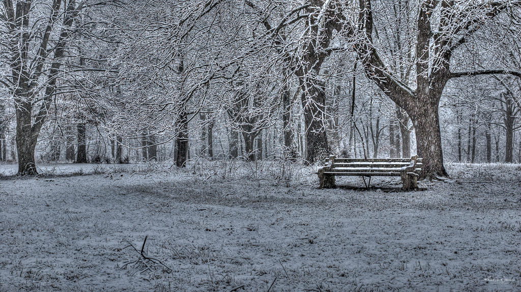 park bench in the snow at Skillman Park