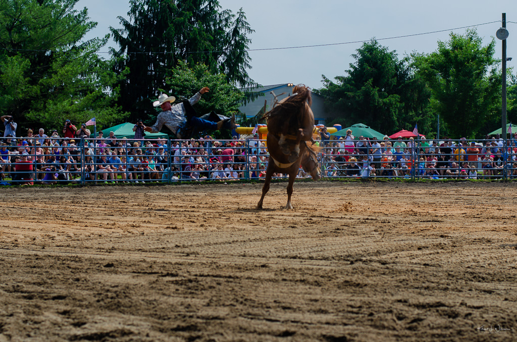 cowboy being thrown from horse
