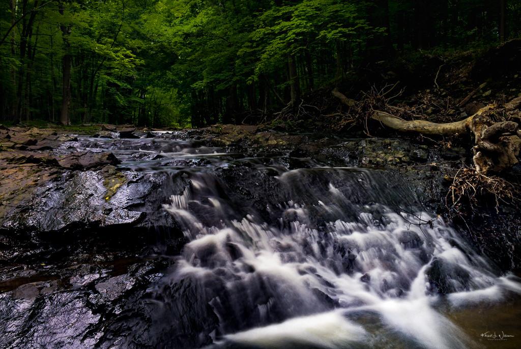 The Rock Brook, Skillman, New Jersey