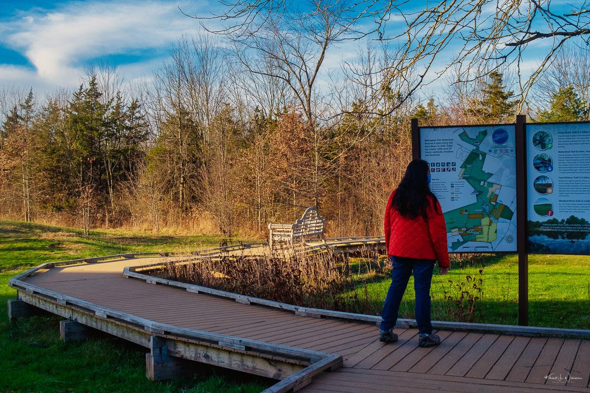 Stony Brook Trail Loop