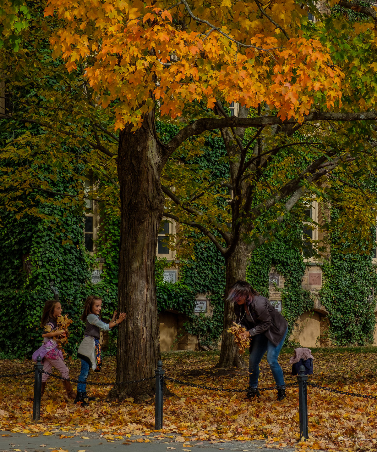 Autumn at Princeton University with people playing in leaves